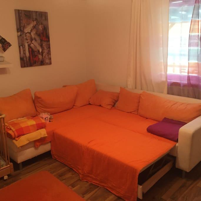 Wohnzimmer/Schlafzimmer mit Schlafcouch/ livingroom with a sleepingchouch