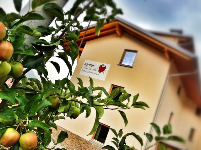 Stanza a tema in Agriturismo - Caldes - Bed & Breakfast