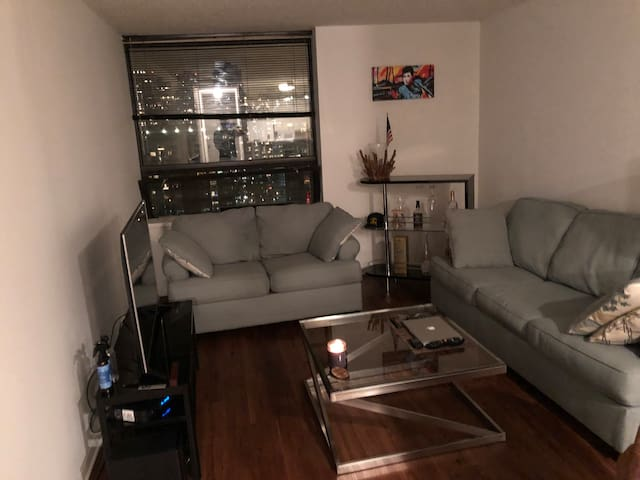 One bedroom in Chicago Downtown