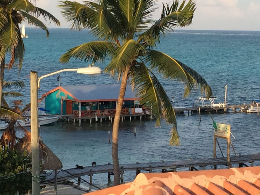 Our local dive shop is just steps from Blue Tang Inn