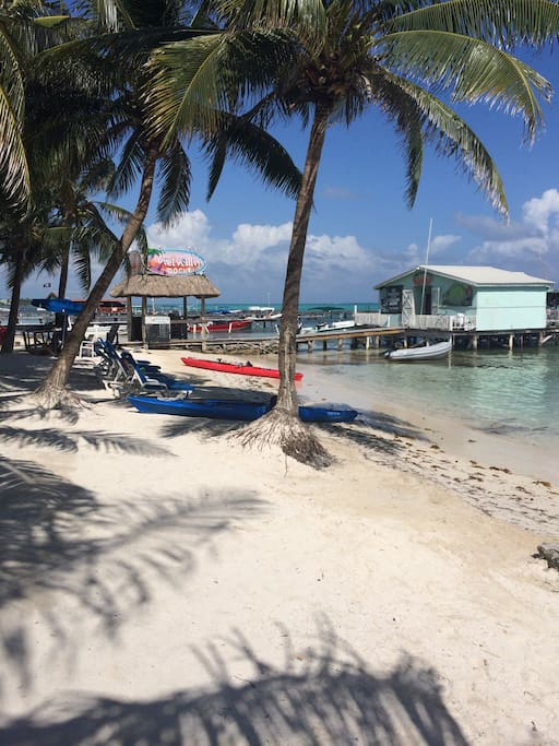 Blue Tang Inn is located on the beach in San Pedro Town, Ambergris Caye