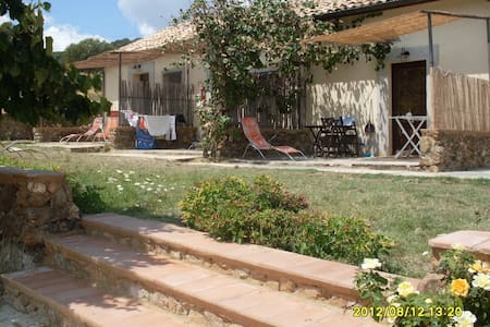 very nice house in olive trees! - Girifalco