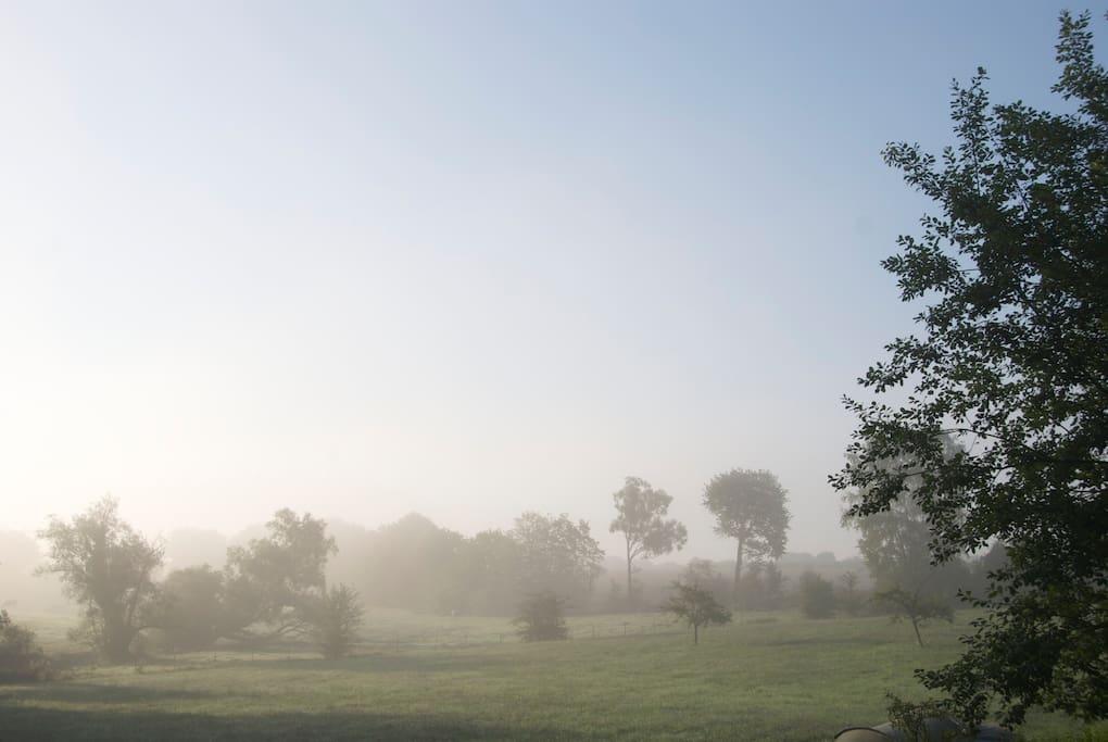 Uitzicht in de ochtend/morning views.