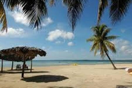 Playa, buceo, flamenco,colibrí,wifi,buen servicio