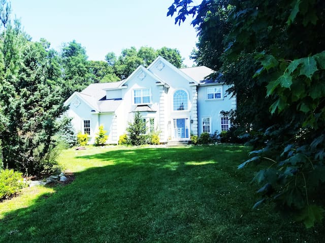 Luxurious Dix Hills /Huntington Mansion