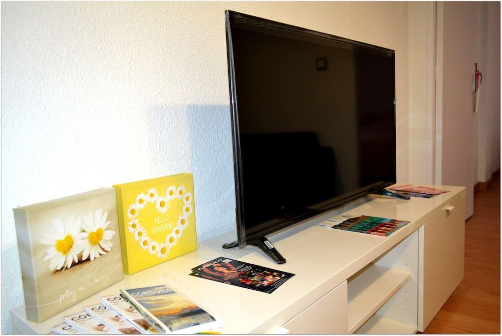 TV Plana LED
