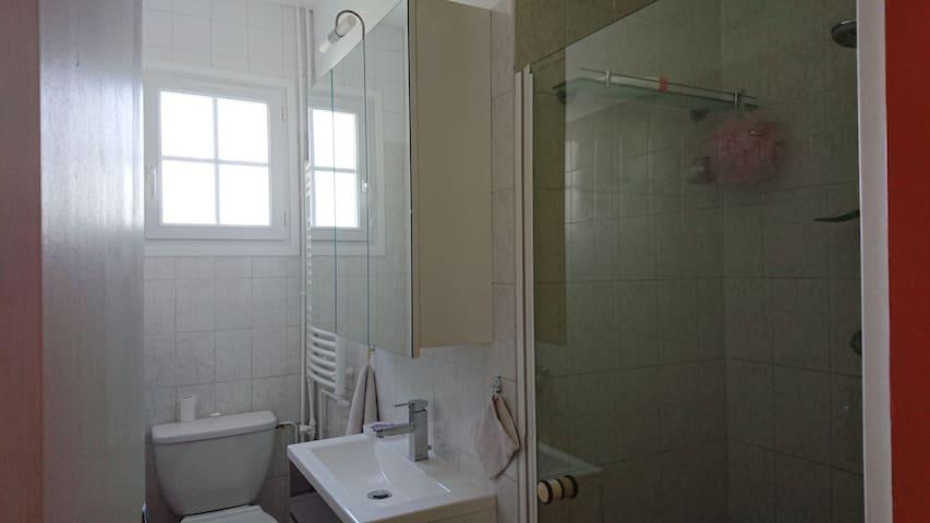 salle d eau  avec toilettes, douche et lavabo