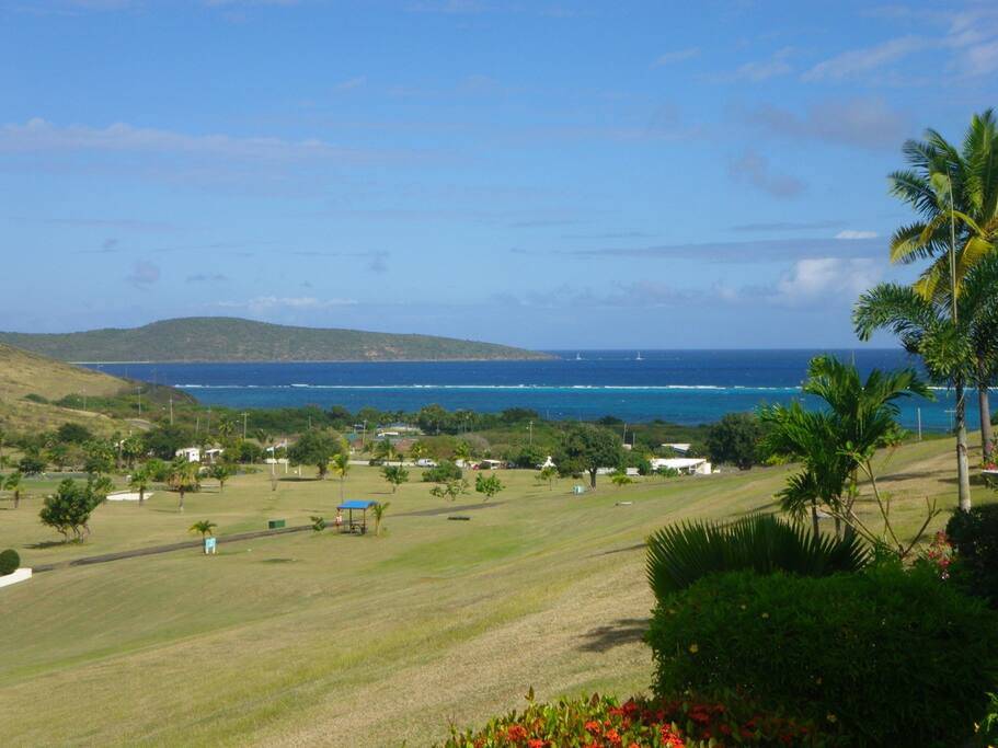 View from patio of Buck Island and Caribbean