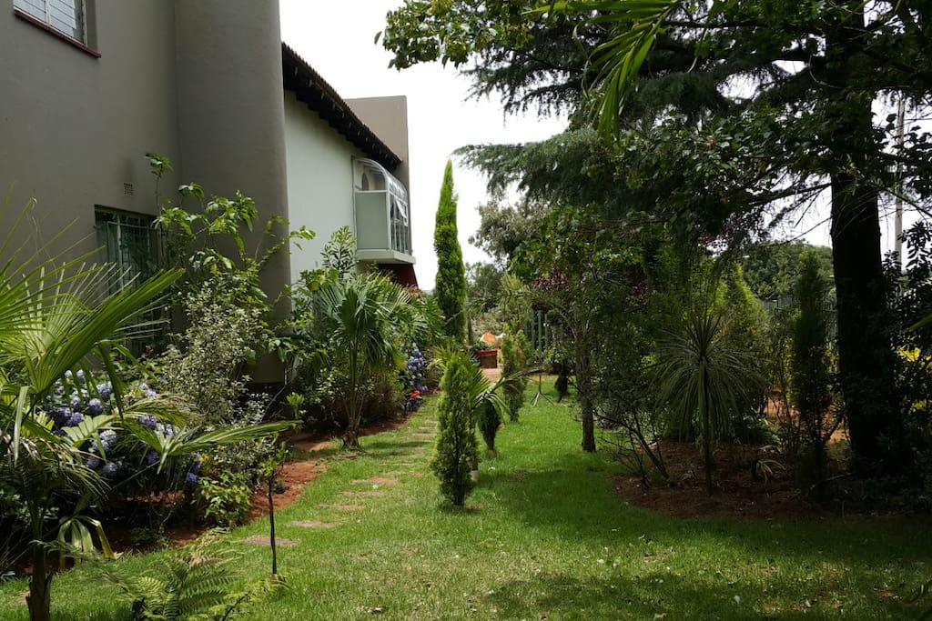 Quiet and relaxing Garden to relax in