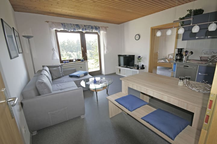 Apartment in a cosy hotel in Upper Franconia, ideal for hikers