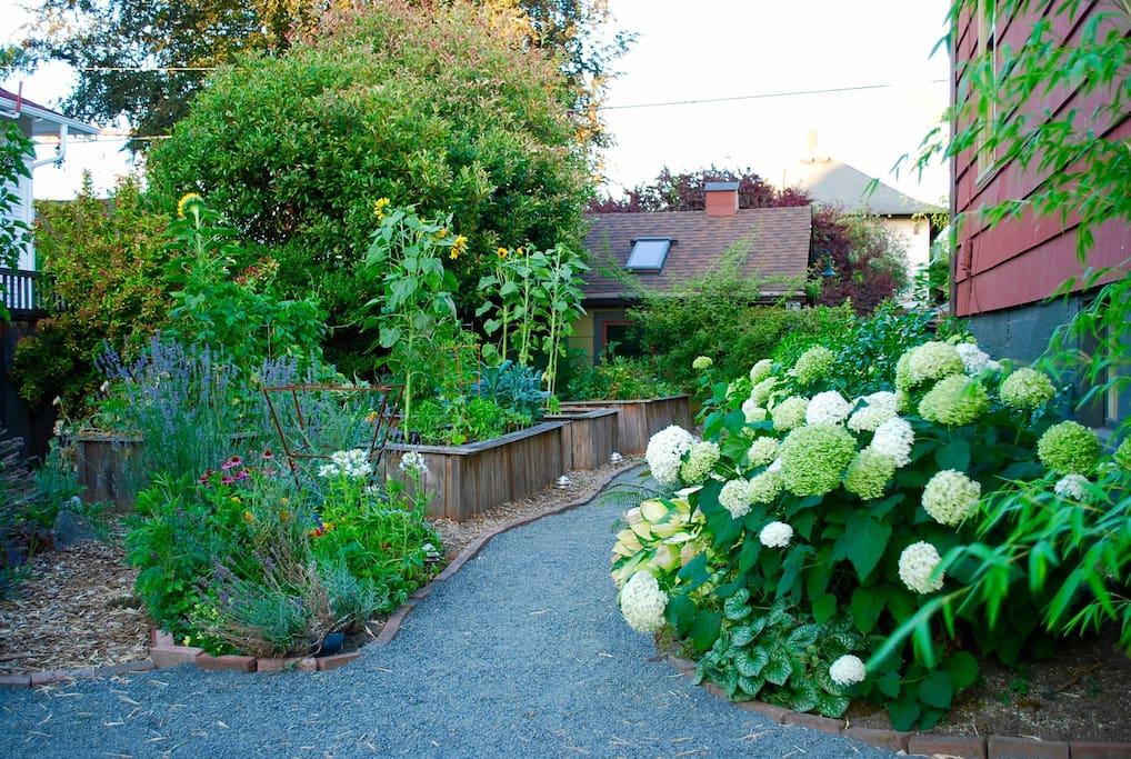Follow the path through the garden
