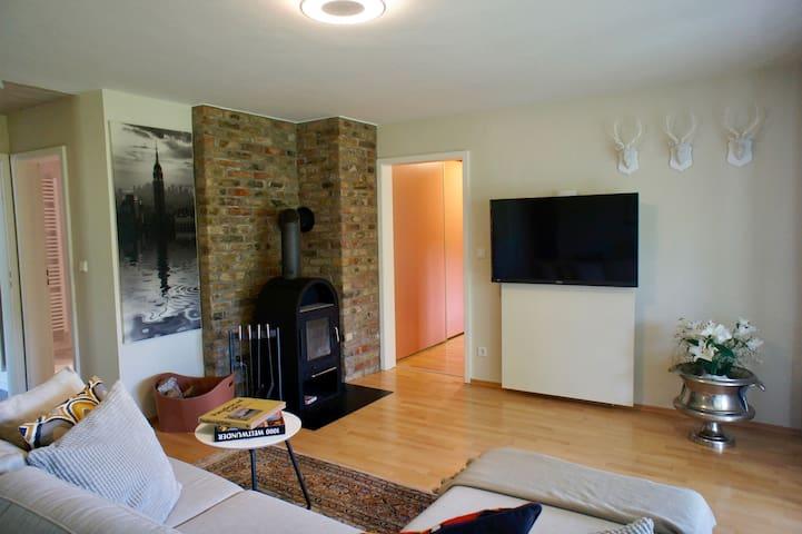 Wohnzimmer Kamin-Ofen