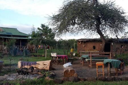WE4KENYA Guesthouse & Farm  Best place Amboseli!