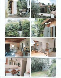 Belle maison traditionnellle avec piscine - Garrigues-Sainte-Eulalie - Talo
