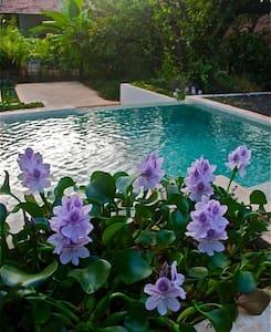 Luxury Beach Side Orchard Villa Goa - Siolim - Villa