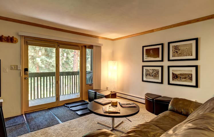 Entire 1br/1ba Bus Route Vail - Vail