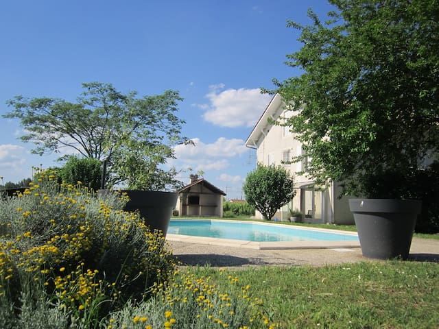 Relaxation in the heart of the Sauternes vineyard - Barsac - Hus