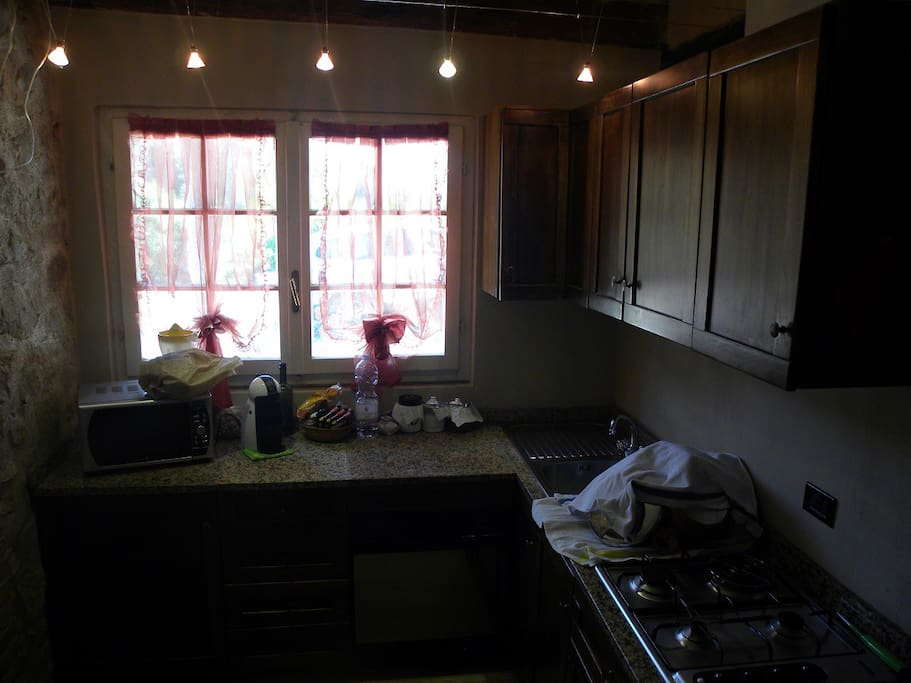 Internal view of the kitchen, equipped with microwave and traditional owen, refrigerator, cooking plate and dishwasher.