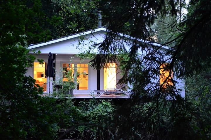 Lakehouse in the woods