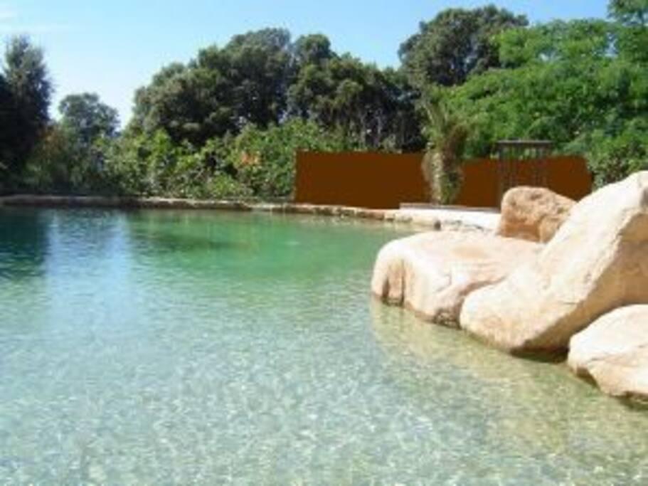 piscine paysagée accessible à toute heure