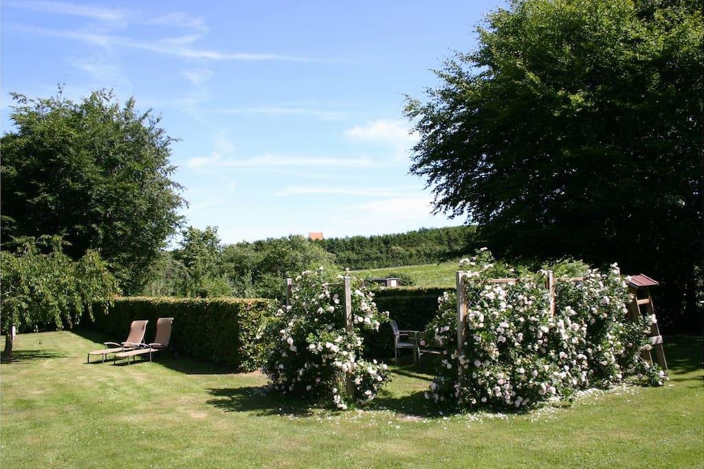 Haven med privat spisekrog til ferieboligen.