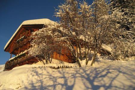 Al Cirum, Apartment Dolomites - Arabba - Lägenhet