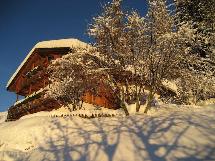 Al Cirum, Apartment Dolomites