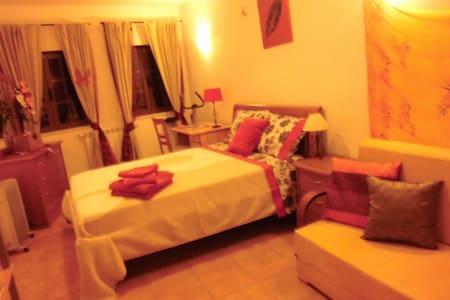 Casa Riqueta Silva - Bordeira - Apartment