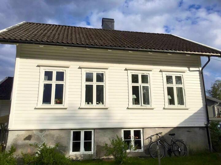 Sjarmerende kjellerleilighet i Sørlandshus