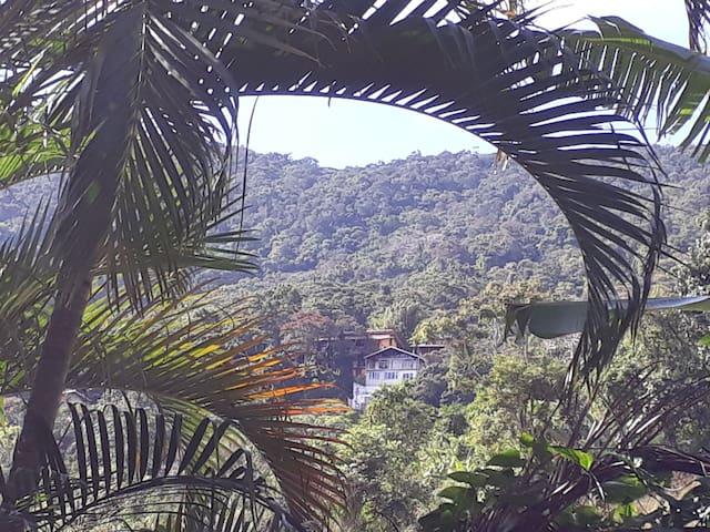 Floresta Tropical - Barra de Guaratiba 2