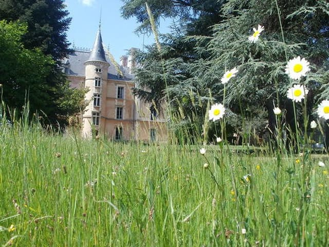 Chateau in countryside -22 beds - Les Halles, Rhône