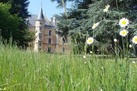 Chateau in countryside -22 beds - Les Halles, Rhône - Schloss