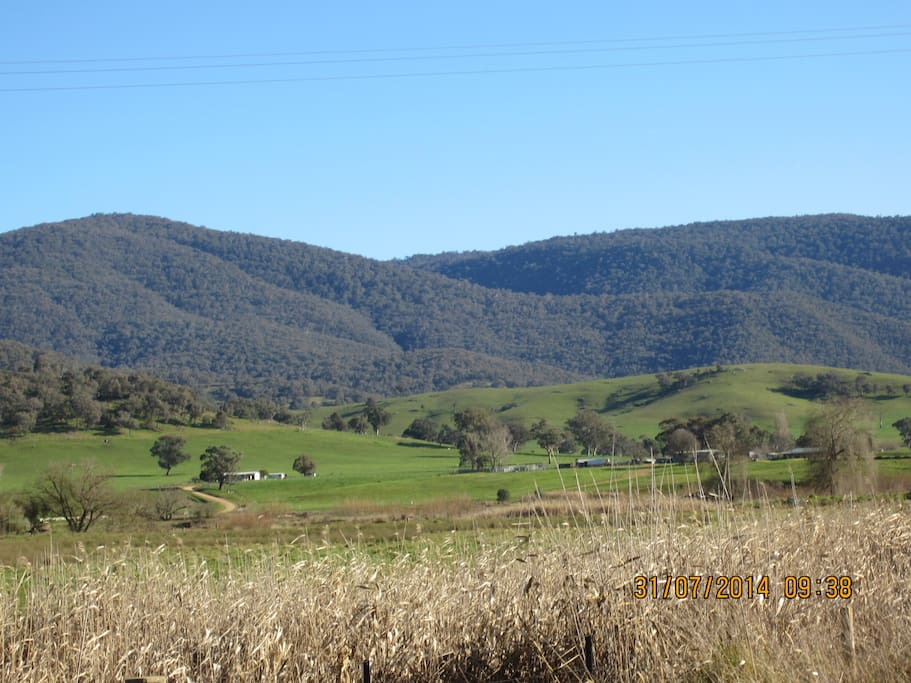 Ryburgh at the foothills of Burrowee National Park