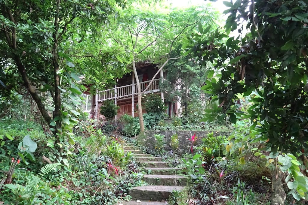 Muong Stilt House is completely surrounded by nature yet is only a 3 minute walk to the center of the resort