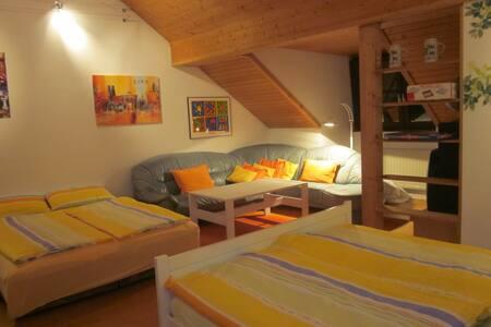 Apart confortable*Salon*Parking*U5 - Munich - Apartment