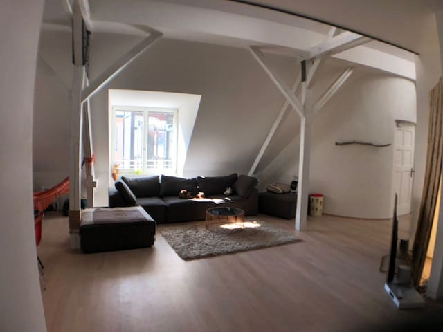170m2 Isar City-Loft with private elevator