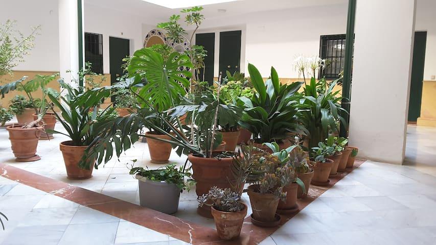 Apartamento tranquilo en el centro histórico - Seville