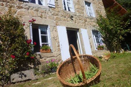 Les 3 chats  - Saillant - Bed & Breakfast
