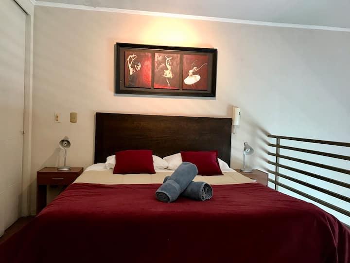 Hermoso y limpio Loft Santiago Centro
