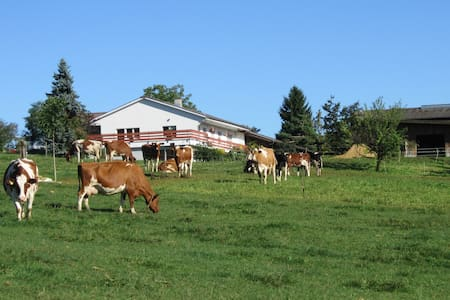 Ferien auf dem Bauernhof - Wölflinswil