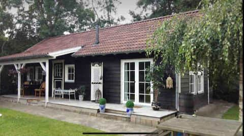 Beautiful cottage near the beach and nature reserve in town