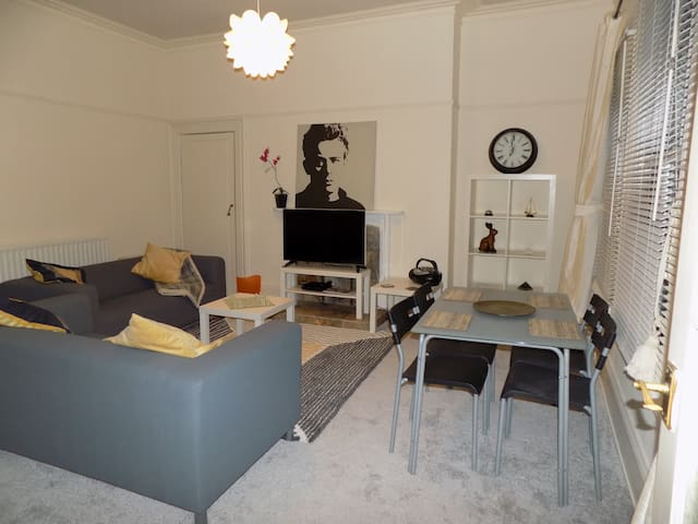 Smart apartment in Hull's leafy Avenues