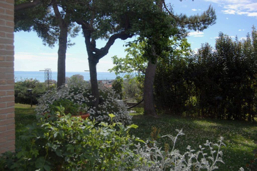 Vista parziale del giardino
