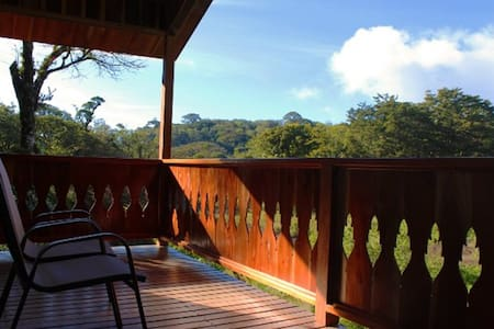 Enjoy The Beauty Of The Cloud Forest - Monteverde