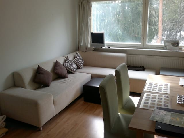 good price, quite, near the sea - Espoo - Apartemen