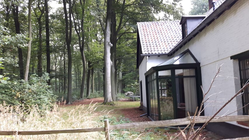 Cottage in the Woods - Putte - Cabana