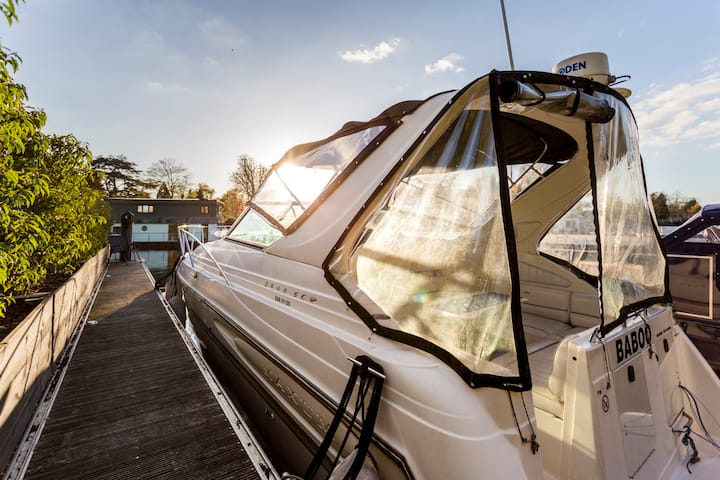 RIVERSCAPES AMERICAN SPORTS CRUISER