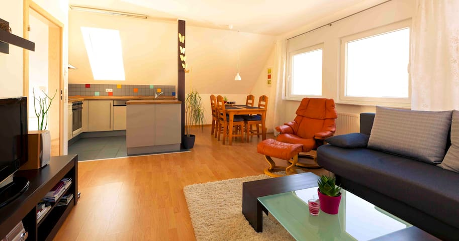 Beautiful apartment Neckar valley - Oberndorf - Huoneisto