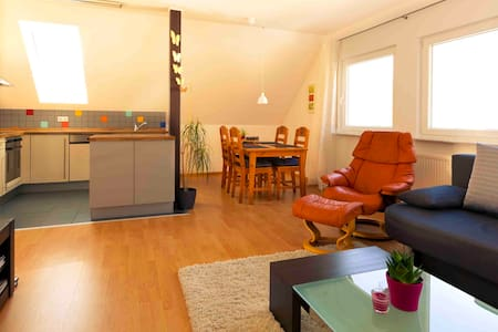 Beautiful apartment Neckar valley - Apartemen
