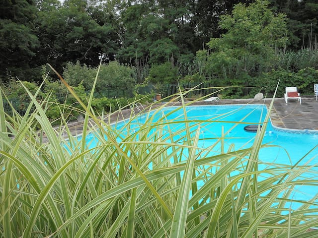 GREENPORT  relax swim  enjoy Bachelorettes-Wedding
